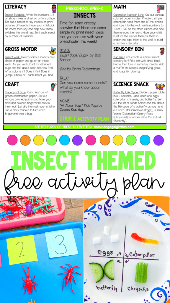 free insect activity plan